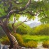 Sinuous Oak