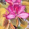 Ben Levin Magenta Flower