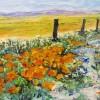 Beth Summers Desert Poppies E1494531650997