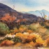 JAMESWISNOWSKIAnza Borrego Autumn