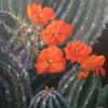 Karen Schroder Cactus Glory