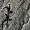 Jeri Grover Sand Art Photograpy 12x18
