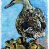 LaurieMorgan.A Watchful Eye 5 5x8 5 Pastel 245. E1524336792862