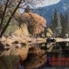 Chris Devor Yosemite Fll 9x6 Photography
