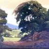 Fearman California Live Oak 8x10.550jpg